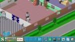 theme-hospital-7