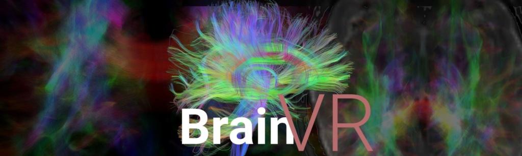 oculus-brainvr1